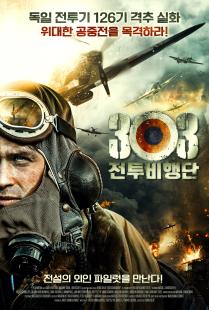 303 전투비행단